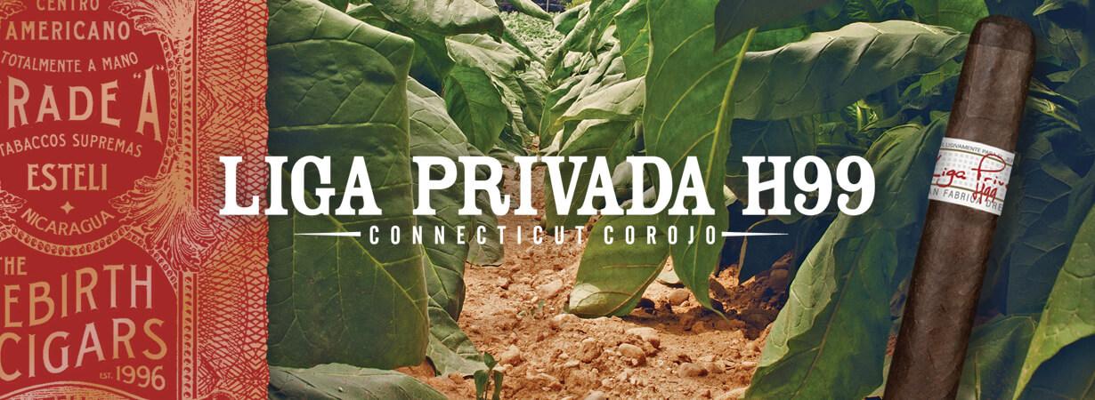 LIGA_PRIVADA_H99_CONNECTICUT_COROJO_1230x450